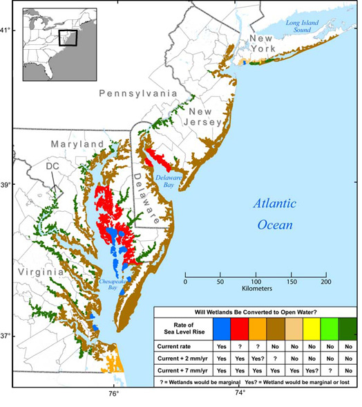 Coastal Sensitivity to Sea-level Rise Report/EPA  This map details coastal and wetland areas across the Mid-Atalntic vulnerable to sumersion at various rates of sea-level rise.