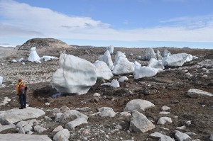 Nicolas Young Stranded icebergs dot the Tininnilik lake basin, West Greenland.