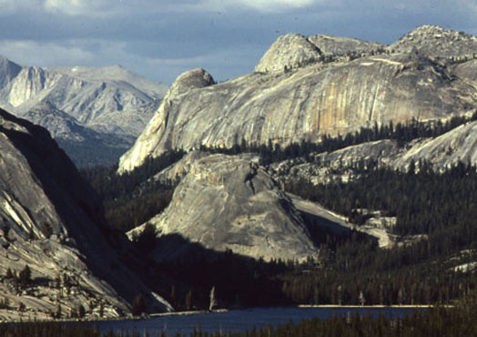 Photo by Scott Stine  Tenaya Lake, elevation 8,150 feet, at Yosemite National Park. One of numerous Sierran lakes with Medieval-era tree stumps rooted at its floor.