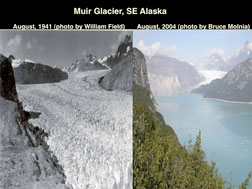 Lonnie Thompson/OHIO STATE  An Alaskan  lake melted from a glacier as global warming is melting glaciers across the globe.