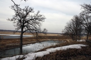 Kristofor Husted/MEDILL The lands in the proposed Hackmatack refuge area include streams, wetlands, grasslands and prairies and 110 threatened or endangered plants and animals.