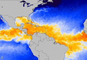 NASA Sea temperatures at the start of the 2010 hurricane season. Rising sea temperatures and severe weather are the forecasts for global warming.