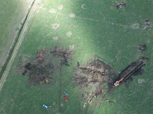 "Courtesy of Jonathan Palmer After a drought, brown ""scorch marks"" on a field in northern New Zealand reveal long-dead Kauri below the surface. See a video of Kauri extraction by Chris Turney here."