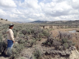 Carol Evans has made cooperative grazing agreements a focal part of her stream restoration work for the BLM in Nevada's Elko District.