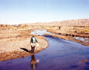This 1980 image shows the denuded conditions that existed along Maggie Creek before grazing agreements were in place to manage cattle and before beaver returned to the area. (Photo credit: BLM, Elko District)