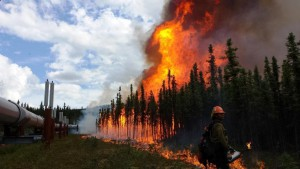 Department of Agriculture The Aggie Creek Fire is located 30 miles northwest of Fairbanks, AK. The fire was started by a lightning strike on Jun. 22, 2015 and has consumed an estimated 31,705 acres. USFS photo.