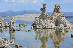 Photo Courtesy D. Funkhouser and G. Ali Tufas in Mono Lake.